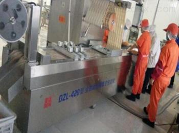 DZL-420内蒙古牛排拉伸膜真空包装机厂家