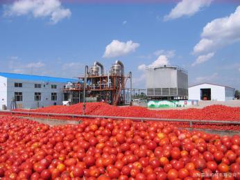 JD-FPL番茄酱生产设备之双效真空浓缩锅