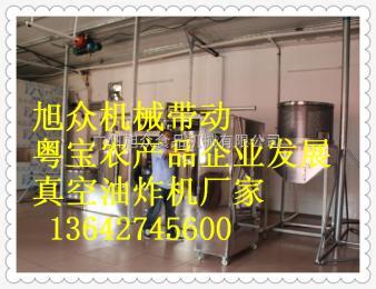 ZK-3800C果蔬脆片加工、真空低溫油炸果蔬脆片、保香保色。