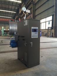 热销24kw电加热蒸汽发生器