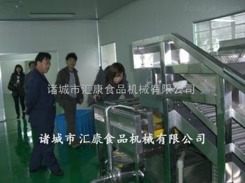QX-6米多功能辣椒清洗机  大白菜清洗机   翻浪清洗机厂家直销