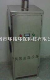 HW-LG梅州/汕頭食品廠專用立柜式臭氧消毒機-環偉直銷