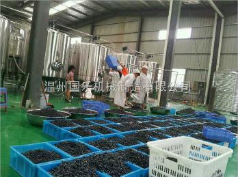 蓝莓果汁生产线首选温州国乐厂家供应蓝莓果汁深加工设备