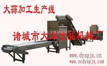 DY加工大蒜的生产线机械【低耗能,原图提供参考】-大洋