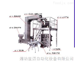 OR--120全自动称重包装机自动上料 自动给料包装设备
