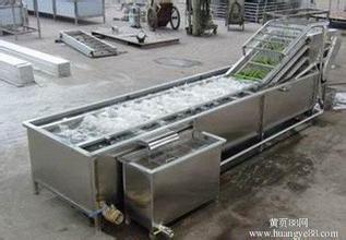 QXJ-5000*蔬菜清洗设备清洗机