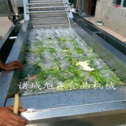 XXQX-5000蔬菜清洗设备生产药材清洗机