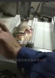 鲅鱼 刀鱼 带鱼鱼切段机