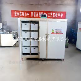 css-200石家庄财顺顺厂家批发全自动控温淋水豆芽机