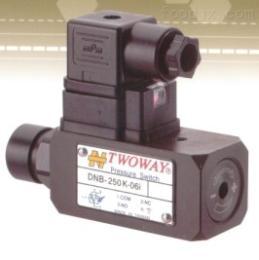 DNB-250K-06i压力继电器