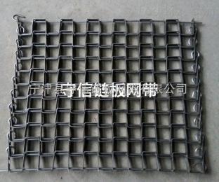 MTL-4589纸箱装啤酒网带链输送机-马蹄链长城网带