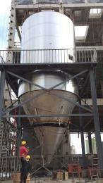 LPG-300调味大蒜粉离心喷雾干燥机