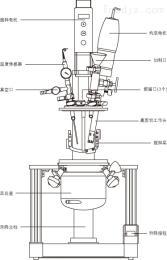 YK-2L实验室真空高剪切分散乳化机,真空反应釜