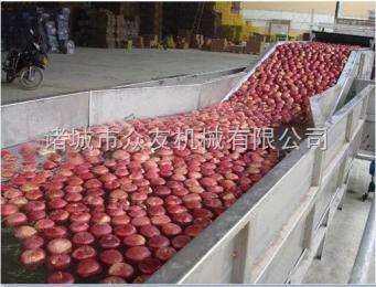 zy-800型果蔬清洗機紅紅的大蘋果清洗機/水果噴淋清洗機/凈菜鼓泡清洗機