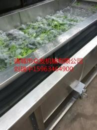 zy-680型清洗机大白菜清洗机/叶菜清洗机/鼓泡喷淋清洗机