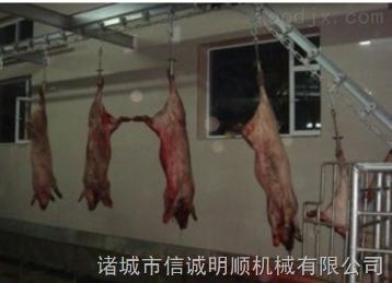 毛猪沥血自动线 小型生猪屠宰设备