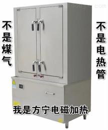 FN东莞电蒸饭柜 厂家直销蒸饭机 大功率蒸饭车商用