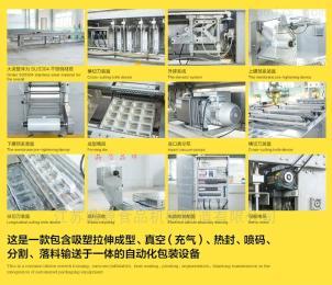 DY-420/520江蘇鼎源食品全自動拉伸膜真空包裝機