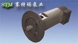 意大利原装进口GR55SMT16B300LRF2三螺杆泵