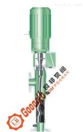 www.goooglb.ccGL型立式螺杆泵
