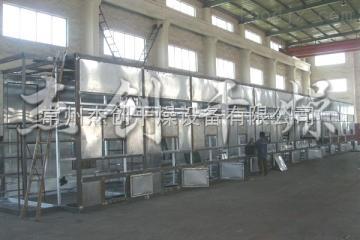 DW2X12-7供應優質廣金錢草專用帶式干燥機