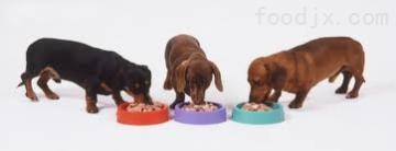 寵物食品膨化機寵物食品生產線