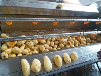 土豆清洗去皮机