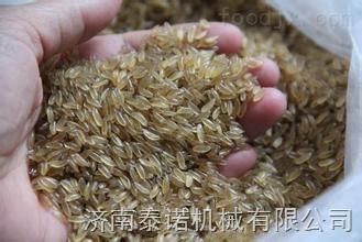 TN70人造米机械,黄金米机械