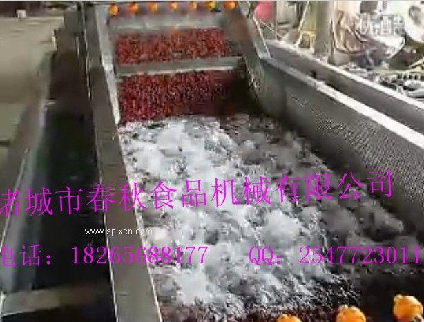 紅棗氣泡清洗機