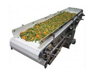 GZV3食品输送机食品输送机|食品输送机设备