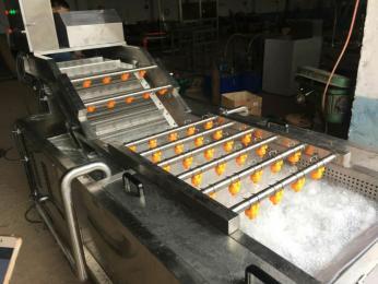 QP-1000叶类蔬菜气泡清洗机
