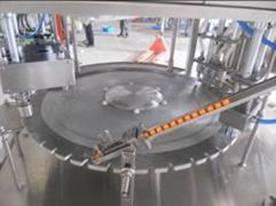 ZLD---6B自立袋灌裝旋蓋機