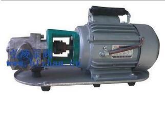 WCB50不锈钢齿轮油泵,高压齿轮油泵,手提式齿轮油泵