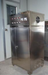 DJ-100G铁岭臭氧消毒机