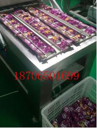 600/4S四封条小包装袋食品真空包装设备