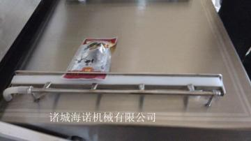 600/2S葱味飞面锁鲜真空包装设备双室真空包装机