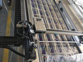 DZR-420带打码系统拉伸膜真空包装机