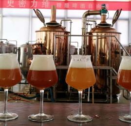 500L自制啤酒机器设备