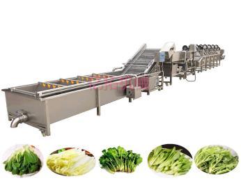 YT-1000东北速冻玉米加工设备