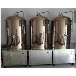 精酿啤酒设备500升一拖三