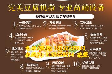 xf-11河南花生豆腐机