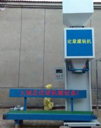 大城县玉米电脑定量灌装机设备定制