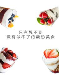 口感清爽细腻的酸奶菌种厂家