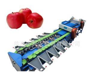 LN-15000B供应利农牌专业苹果重量分级机/称重分选机/选果机/分级设备