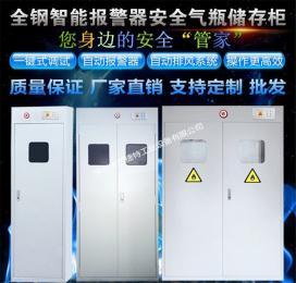XJT-QPG10300广州气瓶柜图片/全钢气瓶防爆柜