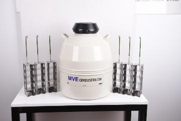 美国MVE液氮罐CryoSystem750
