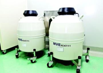 进口生物液氮罐XC47/11-10
