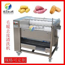 TS-M300小型毛辊土豆清洗去皮机