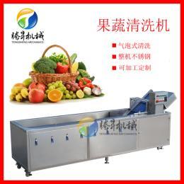 TS-X300供应鼓泡洗菜机 连续式洗菜 厨房设备厂家