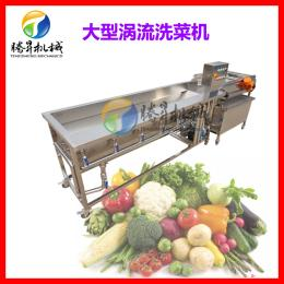 TS-X680连续式蔬菜洗菜机